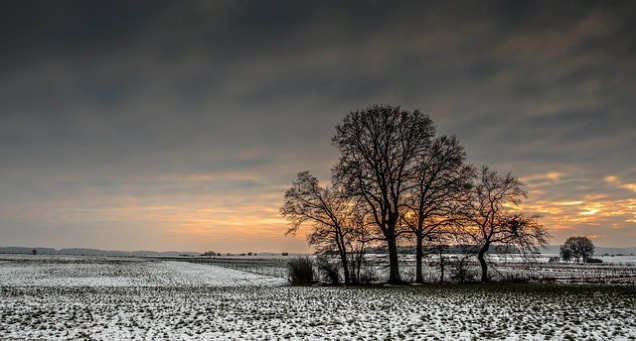 winters-1930981_640