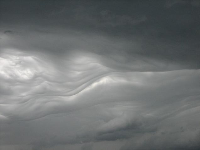 texture-16824_640